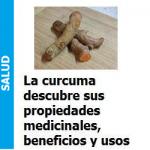 curcuma_portada
