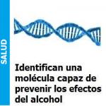 molecu_portada