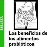 los_beneficios_de_los_alimentos_probioticos_portada