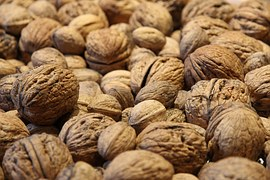 walnuts-1682922__180