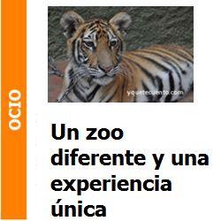 Ocio – ¿Quieres tocar un tigre?