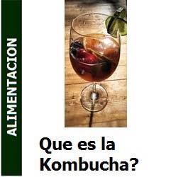 Que es la Kombucha