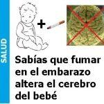 fumar_en_el_embarazo_altera_el cerebro_del_bebe