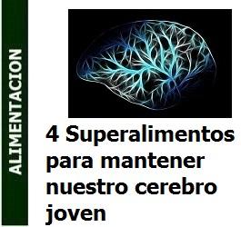 4 Superalimentos para mantener nuestro cerebro joven